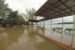 © Timouk, Franck - IRD - Cachuela Esperanza, Beni river 18/02/2014