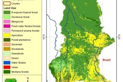 Land cover map.